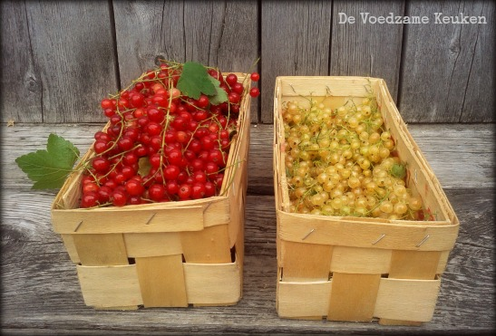 red-white-currants