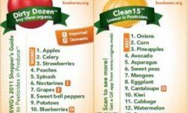 In kleine stapjes naar Echt Eten stap #6 – Groenten en Fruit