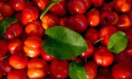In kleine stapjes naar 'Echt Eten' stap #13 – supplementen