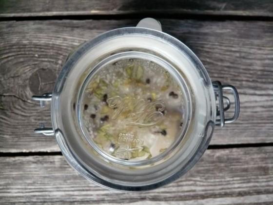 zuurkool fermenteren