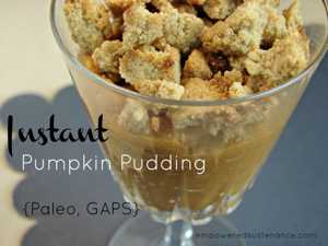 instant-pumpkin-pudding