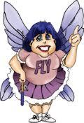 FlyLady Natuurlijk schoonmaken