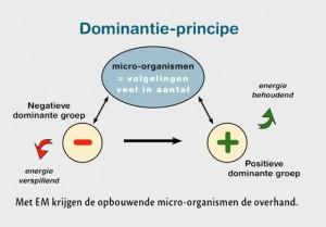 Dominantie-principe van Effectieve Micro-Organismen